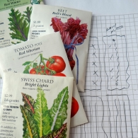 seed packet photo by ND Petitt